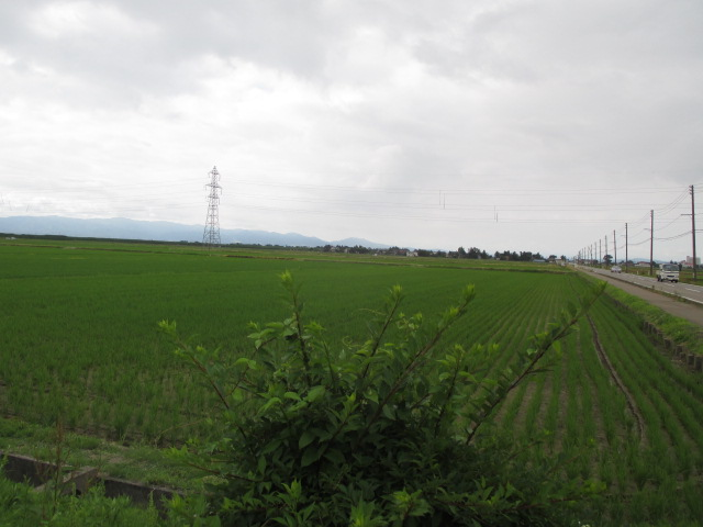 IMG_1140.JPG